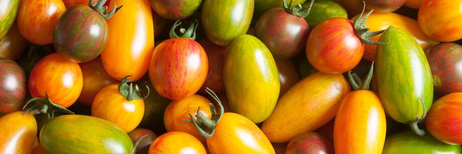 Artisan Tomatoes™
