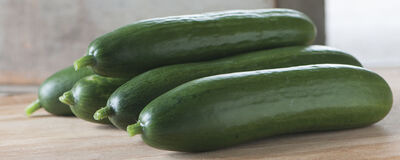 Vigorous, Crisp & Delicious Cucumbers