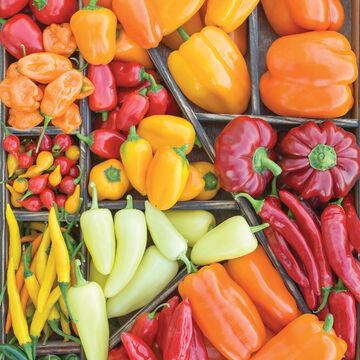 Peppers Aplenty