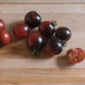 Indigo Cherry Drops Tomatoes