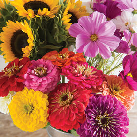鲜切花装备市场集合和混合种植花