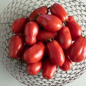 San Marzano II Heirloom Tomatoes