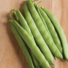 Dulcina Bush Beans