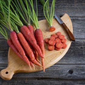 马尔贝克彩色胡萝卜