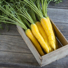 Gold Nugget Colored Carrots