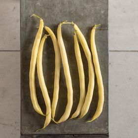 Rocdor Bush Beans