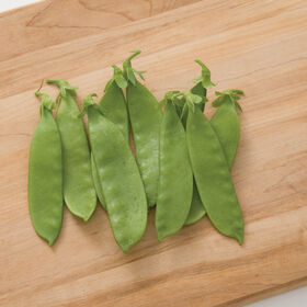 Oregon Giant Snow Peas