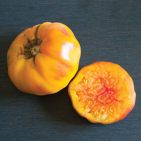 Striped German Heirloom Tomatoes