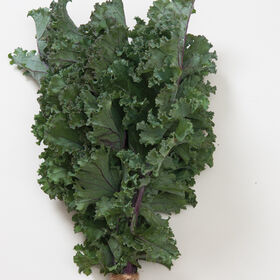 Olympic Red Kale