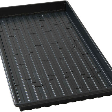 Shallow Black Germination Trays - Case of 100