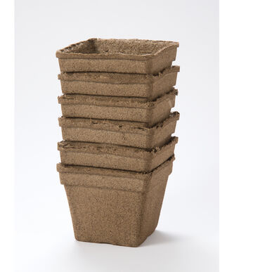 "6"" CowPots™ – 6 Count Biodegradable Pots"