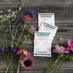 花混合收集花集合和混合