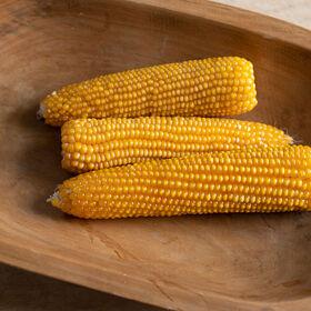 娜娜干玉米