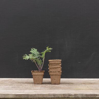 "3"" CowPots™ – 400 Count Biodegradable Pots"