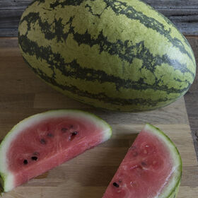 Sweet Favorite Diploid Watermelons