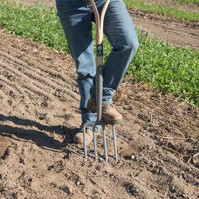 Digging Fork Forks and Spades