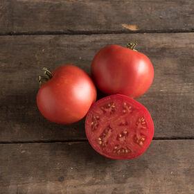 莫斯科传家宝西红柿