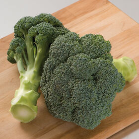 Imperial Standard Broccoli