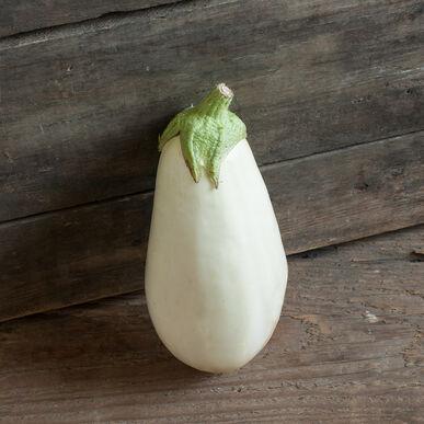 Clara Italian Eggplants