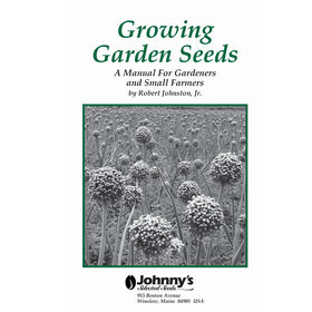Growing Garden Seeds