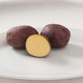 彼得·威尔科克斯马铃薯