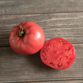 Rose Heirloom Tomatoes