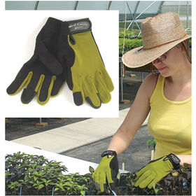 女性的茎,手套