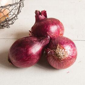 Chianti Full-Size Onions