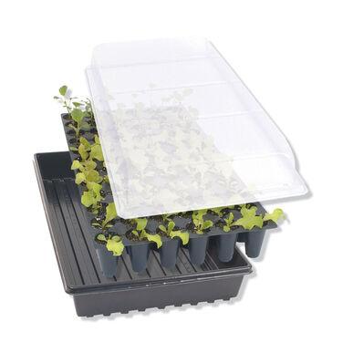 种子启动必需品设置工具和供应