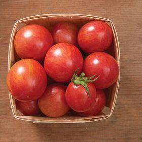 粉红大黄蜂特产西红柿