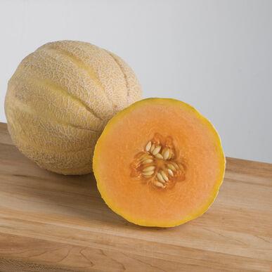 Halona Cantaloupe (Muskmelon)
