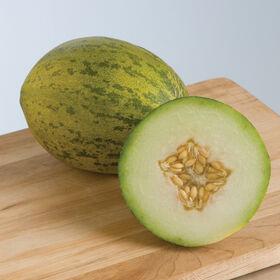 Lambkin Piel de Sapo Melons