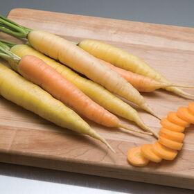 彩虹主要作物胡萝卜