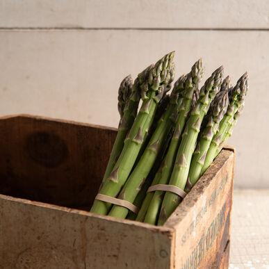 Millennium Asparagus