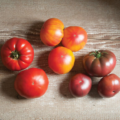 French Heritage Collection Beefsteak Tomatoes