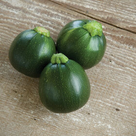 Eight Ball Summer Squash