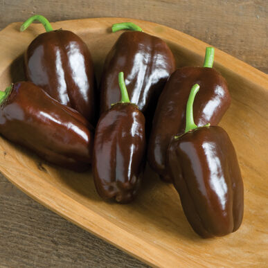 Sweet Chocolate Sweet Bell Peppers