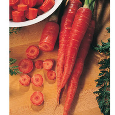 Nutri-Red Colored Carrots