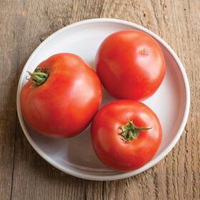 大牛排西红柿