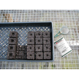 Soil Block Propagation Trays - Pack of 5 Trays Domes and Flats
