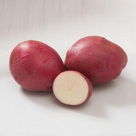 Strawberry Paw Potatoes