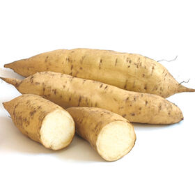 White Yam Sweet Potatoes