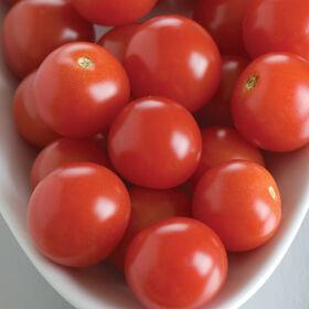 BHN 968 Cherry Tomatoes