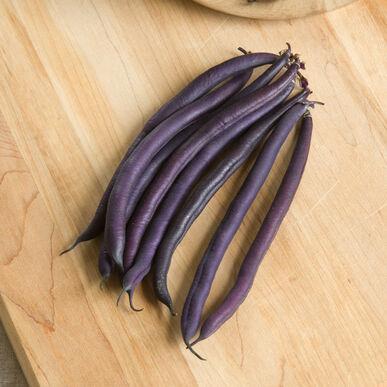 Amethyst Bush Beans