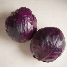 Integro Fresh Market Cabbage