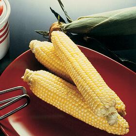 糖面包甜玉米