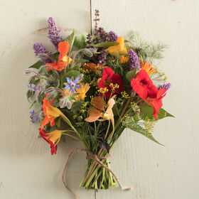 有机食用花收集花集合和混合
