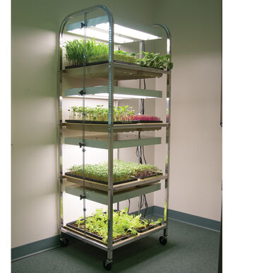 Compact Seedling Light Cart – 8 Trays, 160 Watts