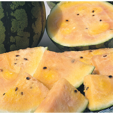 Sorbet Swirl Diploid Watermelons