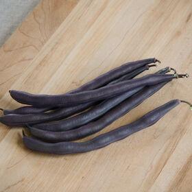 皇家勃艮第布什豆